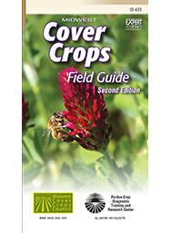 crimson clover; cover photo of 2014 edition of Midwest Cover Crops Field Guide