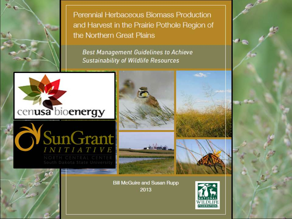 cover image from Biomass Best 