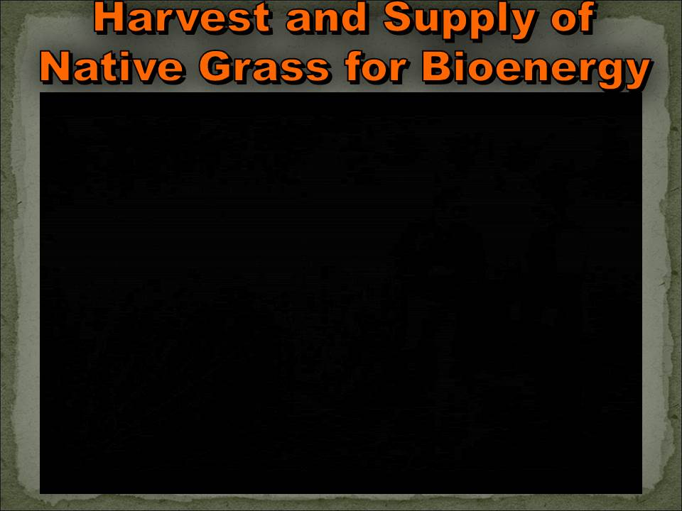 cover image from Harvest and Supply of Native Grass for Bioenergy 