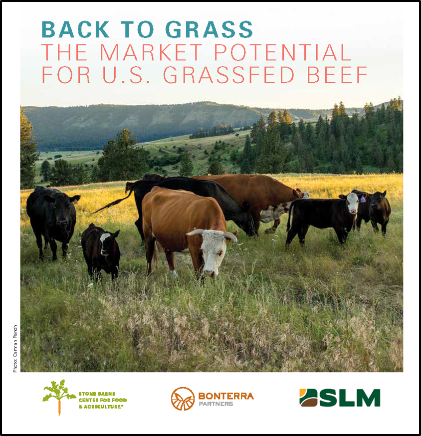 Back to Grass Report cover image