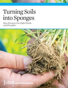 Turning Soils Into Sponges Cover Image